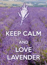 KEEP CALM and love lavender